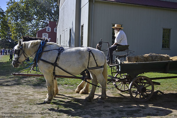 Hayride at Landis Valley Museum